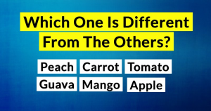 Only People With An I.Q. Of 155+ Can Pass This Tricky General Knowledge Test! How About You?