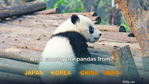 Can You Match The Animal To The Country It Comes From?